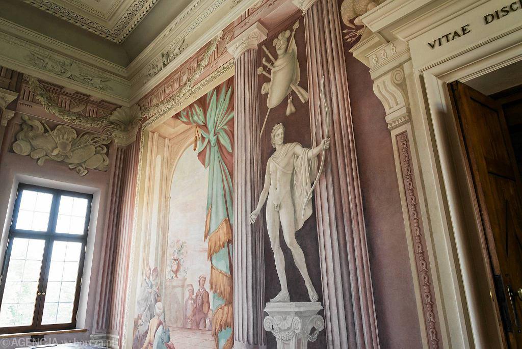 Pałac w Wilanowie. Sala Uczt / FRANCISZEK MAZUR