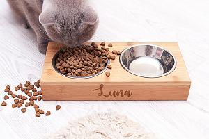 Crazyshop zaskakuje - personalizowane akcesoria dla zwierzaków