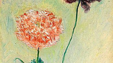 Obraz Claude'a Moneta 'Czerwony iróżowy mak' (Pavots rouge et rose, 1883 rok)