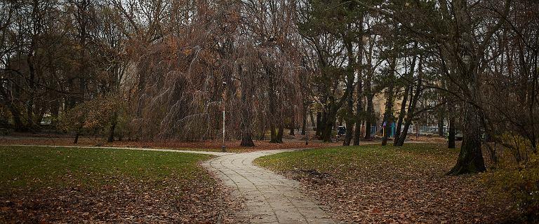 W parku w Łodzi znaleziono zwłoki kobiety, wcześniej mąż zgłosił zaginięcie
