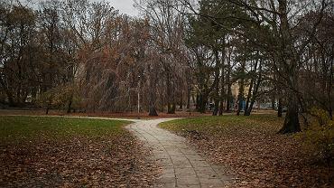 Park / zdjęcie ilustracyjne