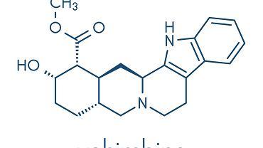 Wyciągi roślinne z drzewa johimby lekarskiej od wieków są wykorzystywane jako afrodyzjak oraz substancja pobudzająca seksualnie