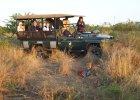 Zastanawiasz się nad wycieczką na safari w Afryce? To najlepiej wydane pieniądze - sprawdziliśmy [FOTORELACJA]