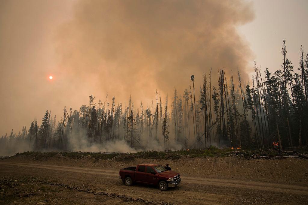 Pożary w tym roku opanowały m.in. Australię, Kanadę, Kalifornię i kilka krajów europejskich. Zdjęcie ilustracyjne