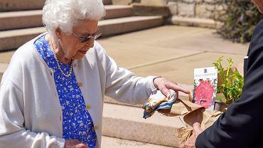 Królowa Elżbieta II zasadziła specjalną różę z okazji setnej rocznicy urodzin swojego zmarłego męża
