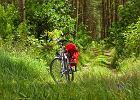 Bory Tucholskie na rowerze. Niemieckie cmentarze, kręte rzeki i dziki las