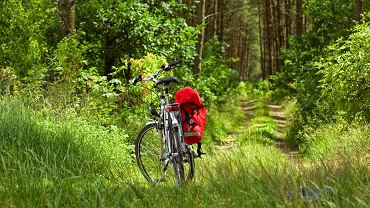 Rower w Borach Tucholskich