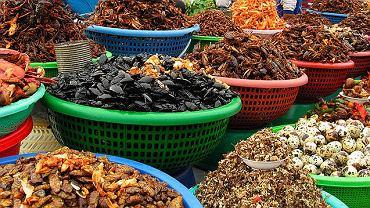robaki, kuchnie świata
