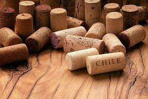 Uwaga, konkurs! Wina chilijskie