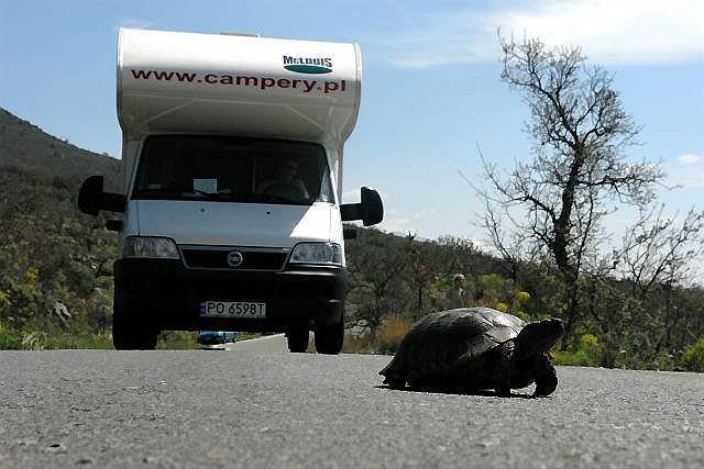Camper: McLouis Glen 430