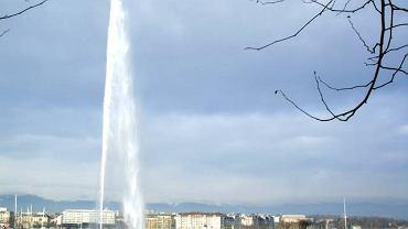 Jet d'eau nad Jeziorem Genewskim