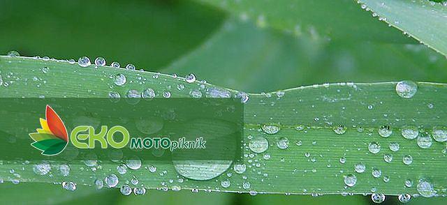 Eko Rajd - Auto Moto Show 2010
