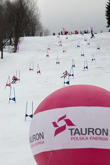 Tauron Energi Ski