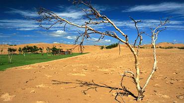 Na obrzeżach pustyni Gobi