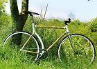 Rowerek Bambo