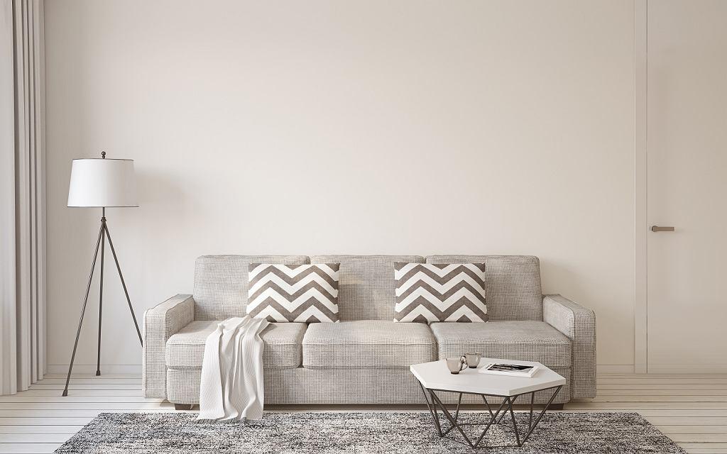 Nowoczesny salon z dywanem