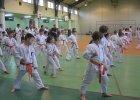 Dragon zaprasza na treningi karate. Zapisy dla dzieci i dorosłych