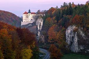 Dokąd wyjechać w Polsce jesienią? Ścieżka w koronach drzew i miasto, w którym Malkovich czuł się jak u siebie