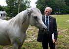 """Stadnina w Janowie z nowym prezesem. """"Poprzedni do koni nawet się nie zbliżał"""""""