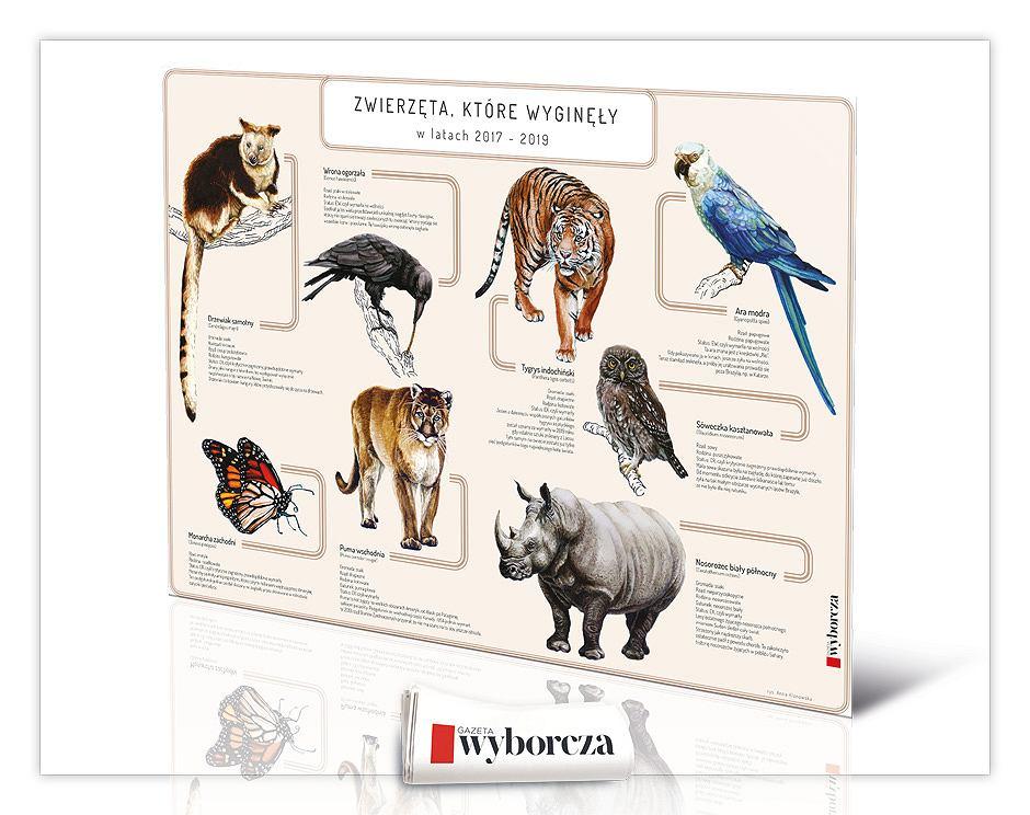 Piękny plakat zwierząt, które wyginęły w latach 2017-2019 wraz z fascynującym opisem - już we wtorek, 25 lutego z 'Wyborczą'.