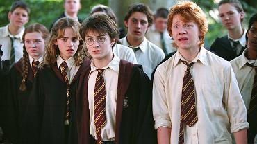 Rupert Grint w 'Harrym Potterze'