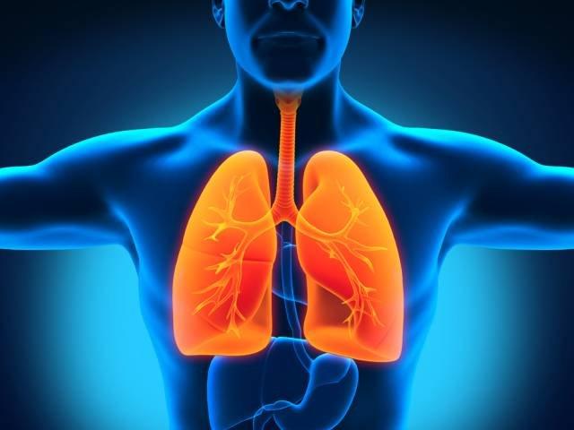 Wywołana przez zakarzenie infekcja bardzo szybko przechodzi w zapalenie płuc