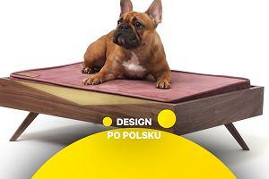 Polski design nie omija zwierzaków. Oto eleganckie akcesoria, które integrują się z wystrojem domu