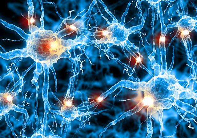 Ten szczególny rodzaj nadwrażliwości ma związek ze zmianami w obrębie układu nerwowego