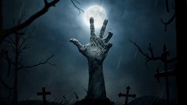 Netflix seriale o zombie.
