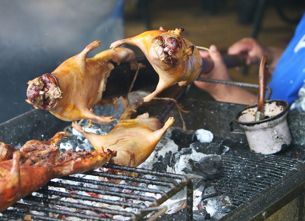 Pieczona świnka morska / shutterstock