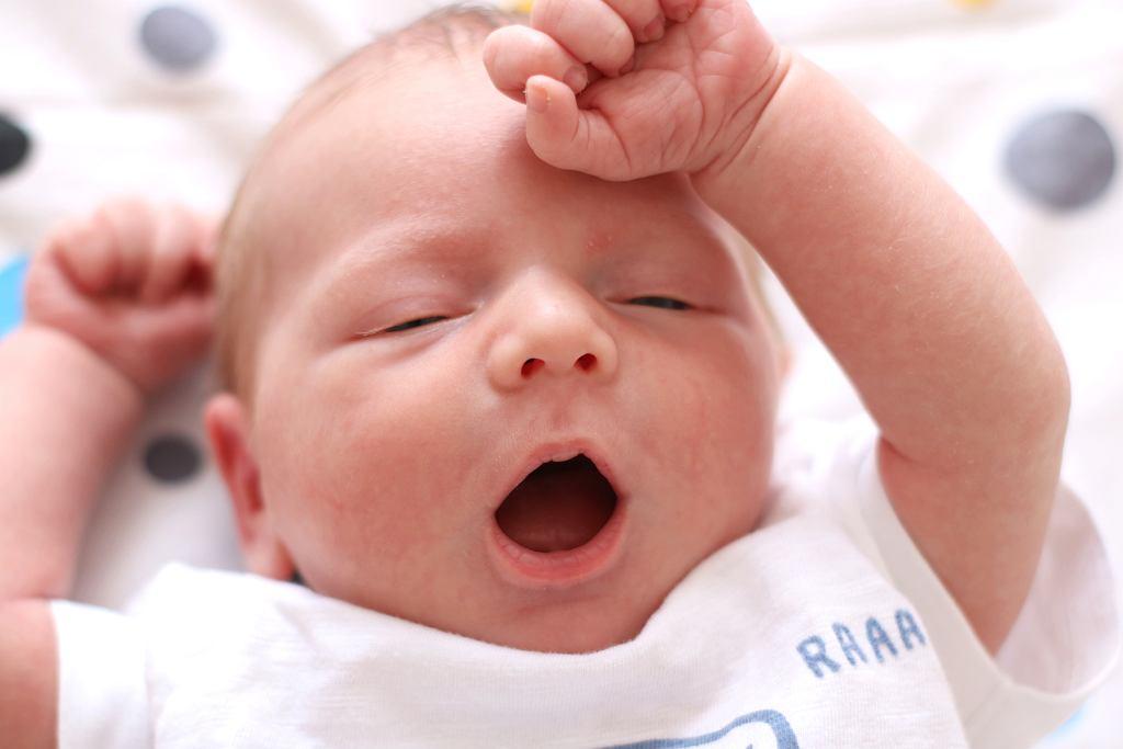Gdy maluch się budzi, zapewne jest głodny. Jakie mleko dla noworodka, a jakie dla niemowlaka?