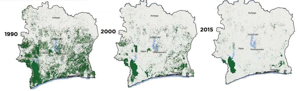 Zalesienie w Wybrzeżu Kości Słoniowej