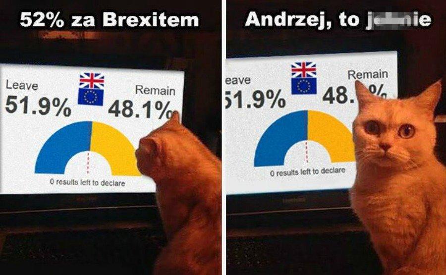 711a257949189d To wcale nie jest śmieszne, ale... Świat komentuje decyzję Brytyjczyków  [MEMY]