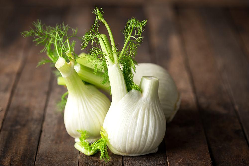 Koper włoski, zwany również fenkułem, to roślina polecana przy wielu dolegliwościach, takich jak wzdęcia, problemy trawienne, przeziębienie czy kaszel
