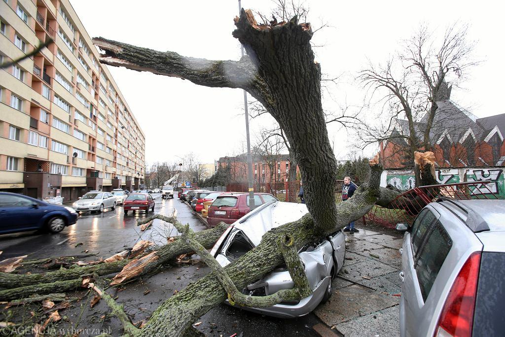 Skutki silnego wiatru w Szczecinie