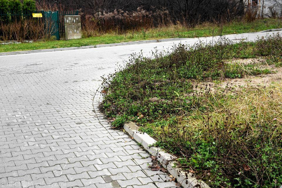 Nowe Chodniki I Oświetlenie Na Osiedlu Gruszowe Sady W Olsztynie
