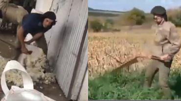 Edinson Cavani zaangażował się w prace rolnicze