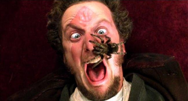 13 rzeczy, których nie miałaś pojęcia o filmie 'Kevin sam w domu'