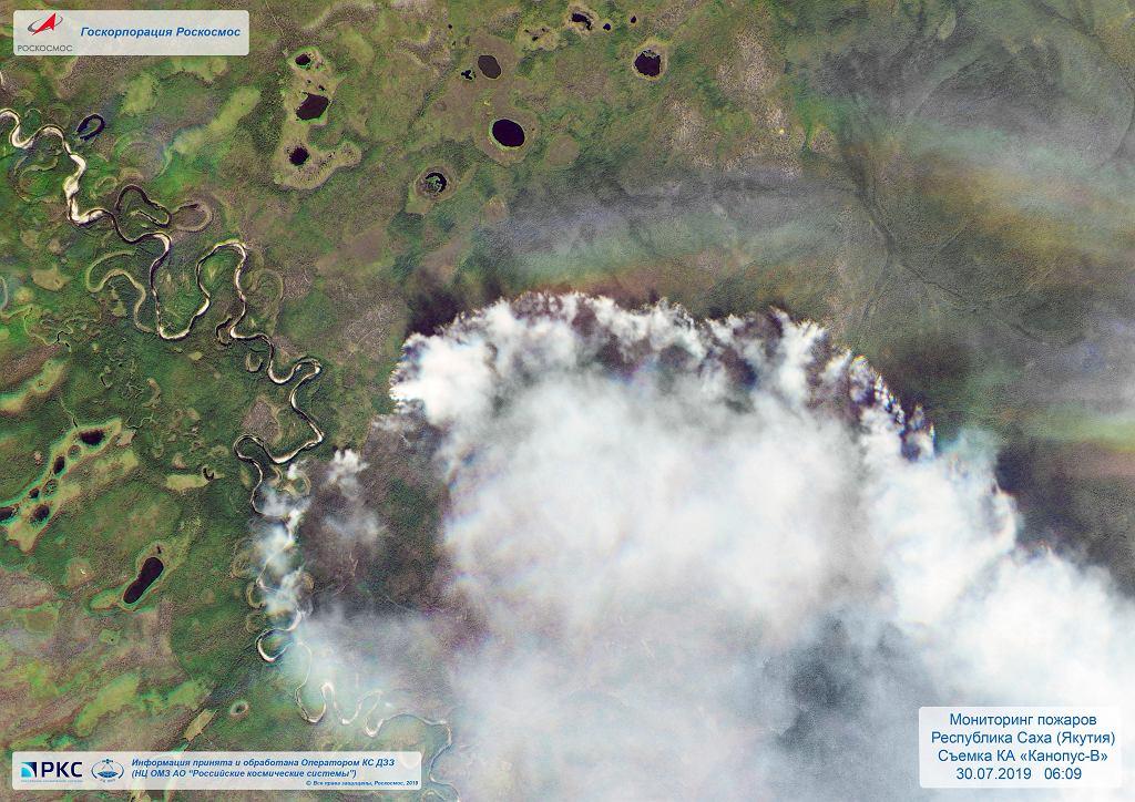 Rosja. Pożary lasów.