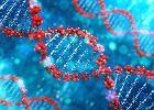 Sztuczna inteligencja, dzięki bardzo szybkiej analizie genomu, pomoże wykryć raka