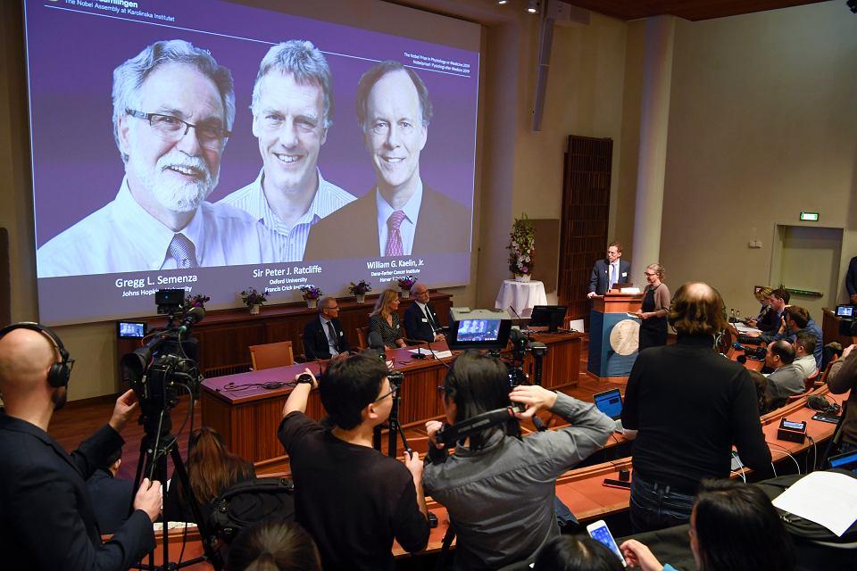 Nobel z medycyny i fizjologii 2019