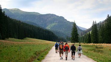 Turyści w Tatrach pomylili wiadra na wodę dla koni z koszami na śmieci // ZDJĘCIE ILUSTRACYJNE