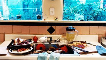 Zlew i deska do krojenia to raj dla bakterii. A gąbka do mycia naczyń jest 200 tys. razy brudniejsza od deski sedesowej!