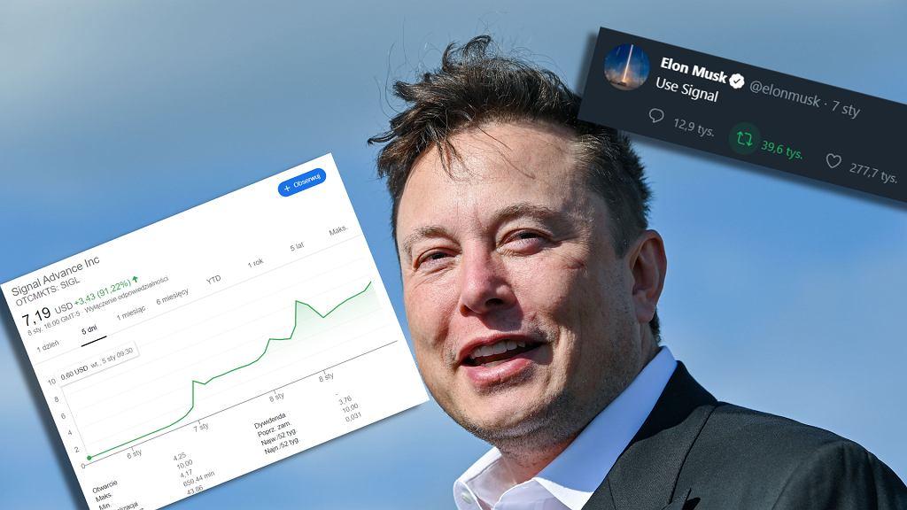 Elon Musk poleca Signala, w wyniku czego rosną akcje spółki niezwiązanej z aplikacją