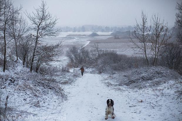 Zdjęcie numer 41 w galerii - Zima w Krakowie - śnieg przykrył ulice, domy, parki [GALERIA]