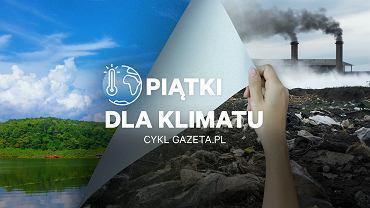 Piątki dla klimatu w Gazeta.pl