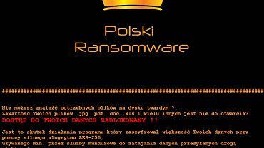 Polski-Vortex-Flotera Ransomware