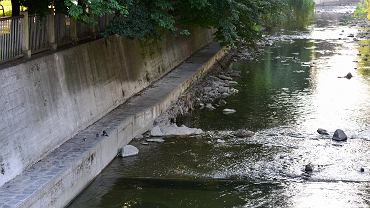 W gorące dni mieszkańcy wielu miast szukają ochłody nad rzekami. Niestety, bielszczanie raczej nie mają takiej możliwości. </p> Przepływająca przez Bielsko-Białą rzeka Biała nie jest zbyt dostępna dla mieszkańców. Na długim odcinku jej wybetonowane brzegi całkowicie uniemożliwiają zejście do wody. W innych miejscach brzegi są porośnięte chaszczami i zaśmiecone. Jedynym miejscem w centrum, gdzie można zbliżyć się do rzeki, jest park Włókniarzy, ale i tam warunków do wypoczynku nad wodą raczej nie ma. Bielszczanie zastanawiają się, czy kiedyś 'odzyskają' swoją rzekę.