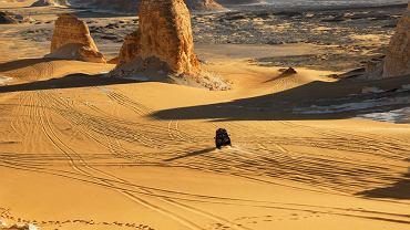 Sahara w Egipcie / fot. Shutterstock