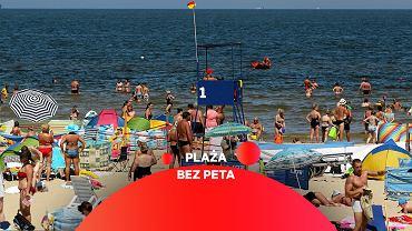 Plaża bez peta